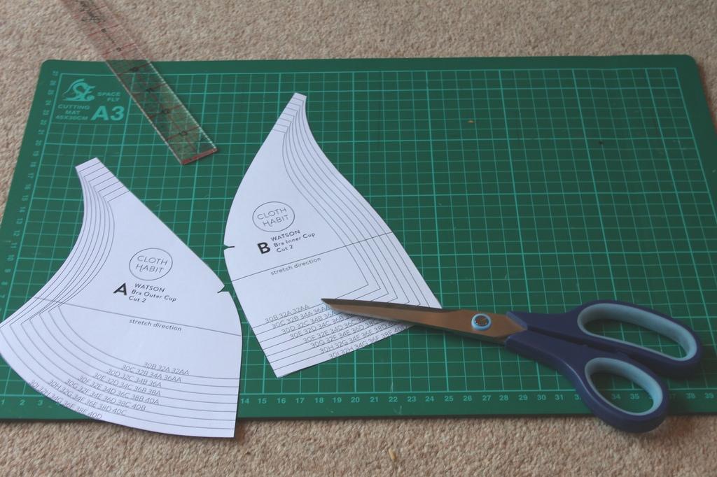 Watson bra pattern review
