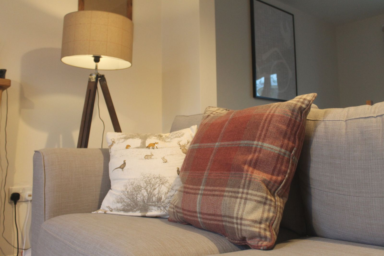 home details - cushions