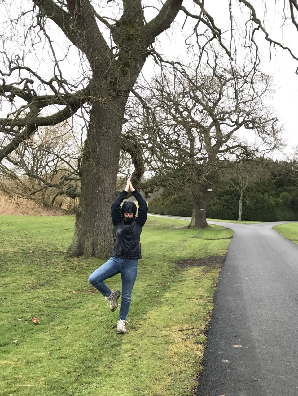 Tree pose (with a tree!)