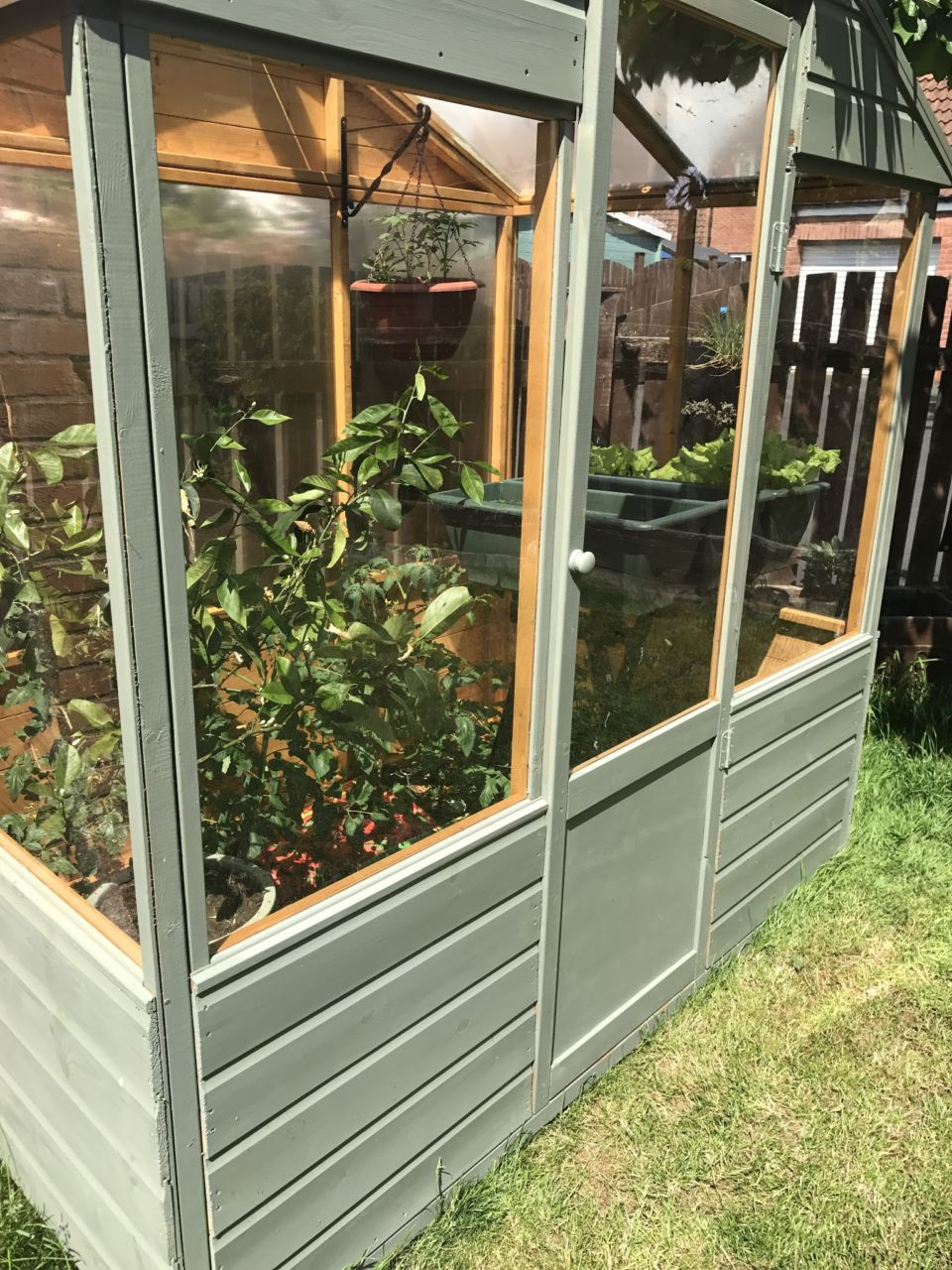 Duck egg painted greenhouse