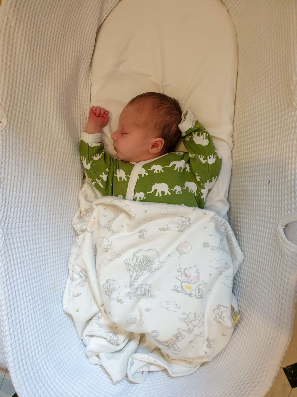 Belles and Babes organic baby clothing subscription review - Pigeon sleepsuit