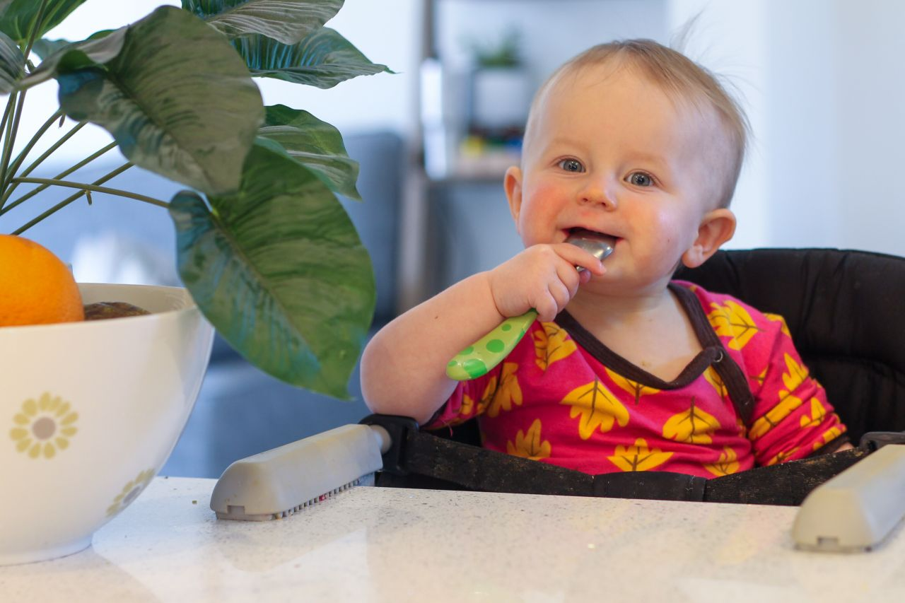 Baby led weaning at 1 year old