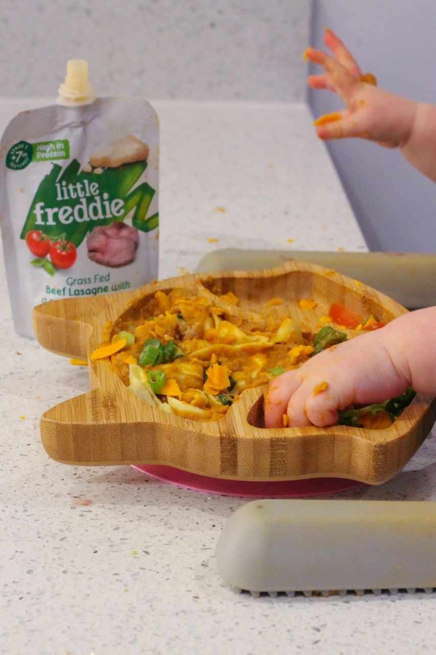 Baby led weaning meal with Little Freddie lasagne pouch